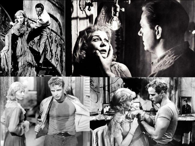 C'est un film dramatique américain de 1951, il a été réalisé par Elia Kazan.Vivien Leigh, Marlon Brando, Kim Hunter… font partie de la distribution. Une femme qui est restée marquée par la mort de son mari, rejoint sa sœur. Les relations entre son mari et elles sont détestables. Cherchant à se marier, tout va dégénérer ! Quel est ce film ?