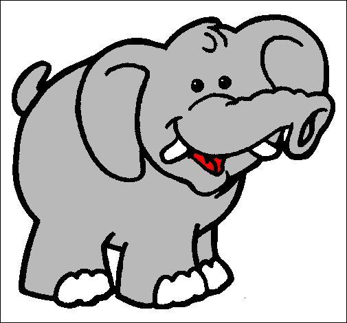 La mémoire de quels animaux peut-elle être comparée à celle de l'éléphant ?