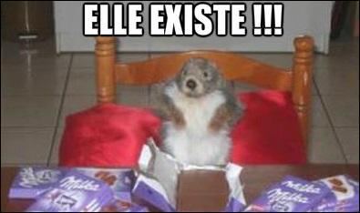 La marmotte a enveloppé le chocolat avec son papier d'après une pub.