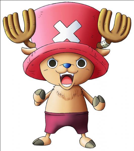 Comment s'appelle cet animal de l'équipage du chapeau de paille ?