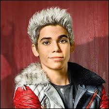 Qui est ce beau jeune homme aux cheveux blancs ?