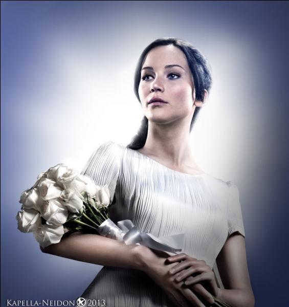 Quel est le surnom que Cinna donne à Katniss ?