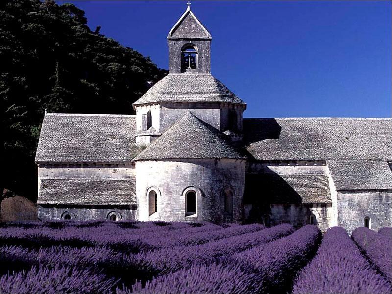 Comment s'appelle le grand parc naturel de la Provence où se trouvent d'adorables petits villages typiques de Provence ?