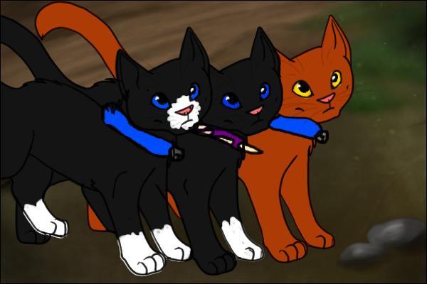 Comment s'appellent-ils, lui, son frère et sa sœur ?