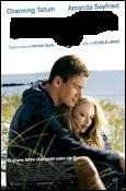 Quel film, sorti en 2010, est un film d'amour ?