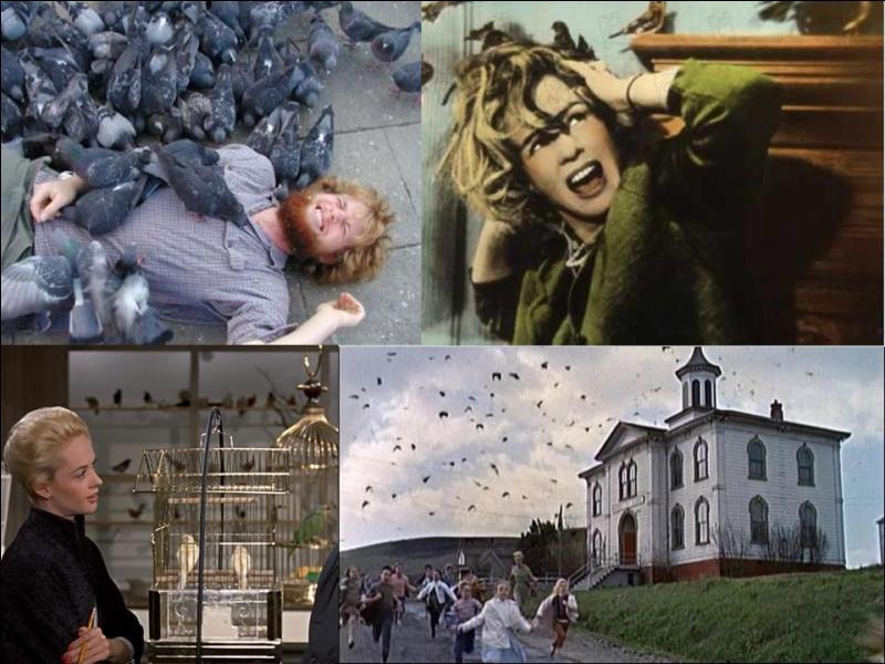 Quizz quelques films cultes des ann es 1960 5 quiz for Miroir film horreur