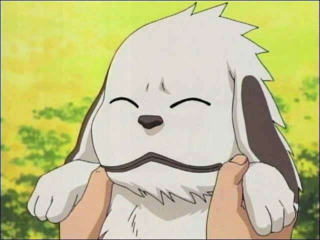 Il est le chien de qui ?