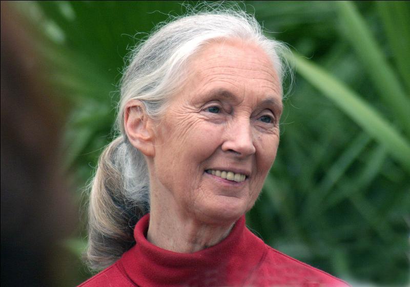 Jane Goodall est une éthologue, c'est à dire...