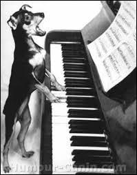 """""""Il jouait de piano debout"""" était une chanson de..."""