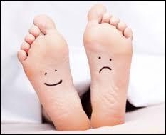 Les cinq os du métacarpe se trouvent dans le pied.