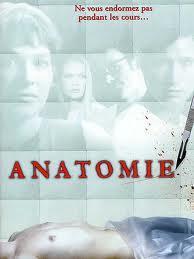 Anatomie du corps humain (20)