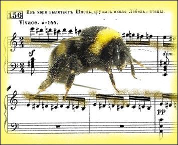 """Interlude orchestral composé par Nikolaï Rimski-Korsakov, pour son opéra """" Le conte du Tsar Saltan""""."""