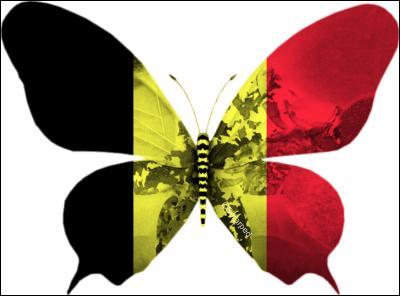 Le pays dont il est question a trois langues officielles. Quel pays est représenté par ce drapeau ?