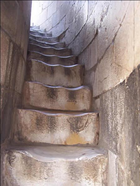 De combien de marches la tour de Pise est-elle constituée ?