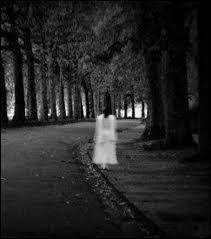 La plupart du temps où peut-on trouver un fantôme appelé dame blanche ?