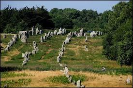 Dans ce lieu, des menhirs et des dolmens sont alignés sur quelques kilomètres, il s'agit...