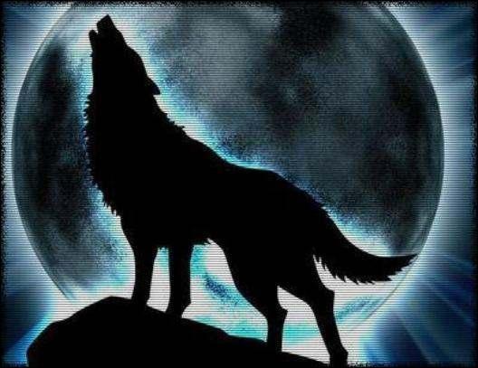 Quel est l'autre nom du loup-garou ?