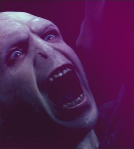 ________________________ Chapitre 5 : Duel ________________________Dans sa mansuétude, Voldemort tient à faire les choses proprement. Quelle faveur fait-il à Harry ?