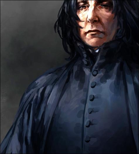 C'est le déclic pour Severus. Le collier en question est le même que celui du souvenir. Il ne sait cependant pas s'il a été détruit ou non pendant la Bataille de Poudlard... Combien d'Horcruxes sont détruits dans Harry Potter et les Reliques de la Mort (partie II) ?