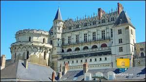 Voici un des châteaux de la Loire, c'est ici qu'un roi de France de 27 ans se cogna la tête au linteau d'une porte et en mourut un peu plus tard.