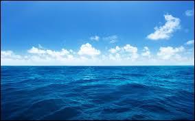 """Quelle mer est parfois surnommée """"La grande bleue"""" ?"""