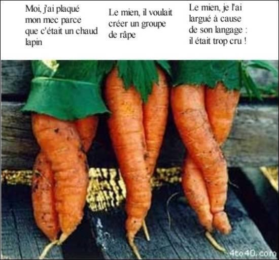 Là non plus vous ne me ferez pas l'affront de ne pas trouver, si je vous dis : 'Poil de carotte'.