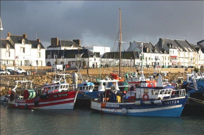 Premier port de pêche des Pays de la Loire, c'est aussi le premier port de pêche de la façade atlantique pour la sardine et l'anchois. Dans quelle commune de Loire-Atlantique se trouve ce port ?