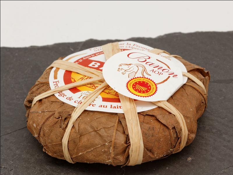 Le banon est un fromage de chèvre emballé dans des feuilles de vigne brunes.