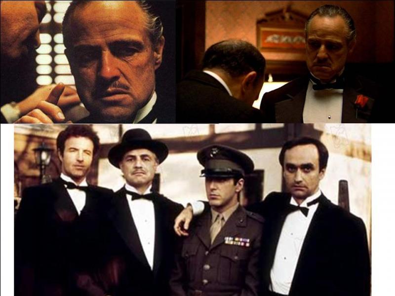 Ce film est un drame et un film de gangsters américain. Il a été réalisé par Francis Ford Coppola.Marlon Brando, Al Pacino, James Caan, Richard S. Castellano… font partie de la distribution. C'est l'histoire d'une des « familles » très particulières de New York. Son « boss » subit un attentat, le fils, héros de la guerre, veut le venger et il le remplacera. Quel est ce film ?