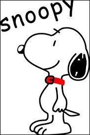 Où le chien Snoopy aime-t-il dormir ?