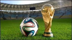 Quel pays a remporté la Coupe du monde de football en 2014 ?