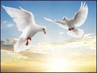 """Qui a dit : """"La danse est une cage où l'on apprend l'oiseau."""" ?"""