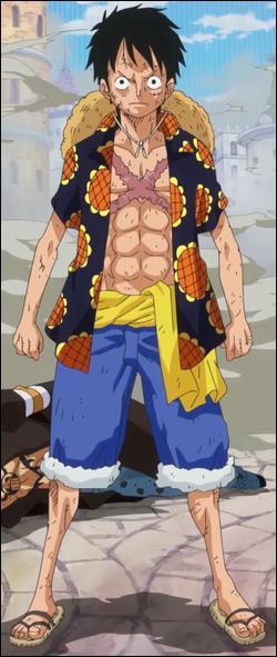 Quelle est la prime de Monkey D. Luffy ?