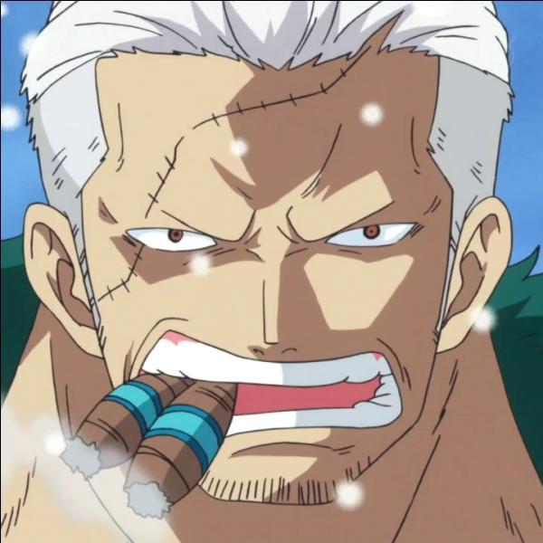 De quel fruit le vice-amiral Smoker tient-il sa force ?