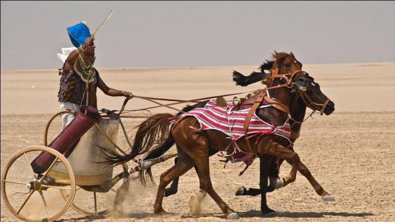 Merveilles de technologie, les chars des pharaons égyptiens possédaient un changement de vitesses !
