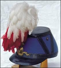 Sur la tête des Saint-Cyriens, les militaires de Coet Quidan, il y a un joli panache de plumes blanches. De quel oiseau proviennent-elles ?