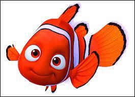 Quel est le nom de ce petit poisson ?