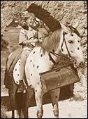 """Quel est le nom du cheval qui a joué dans """"Fifi Brindacier"""" ?"""