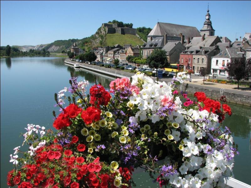 Dernière ville fluviale située sur la Meuse avant la Belgique, elle est connue pour sa Foire aux oignons qui a lieu chaque année, le 11 novembre. Quelle est cette ville des Ardennes ?