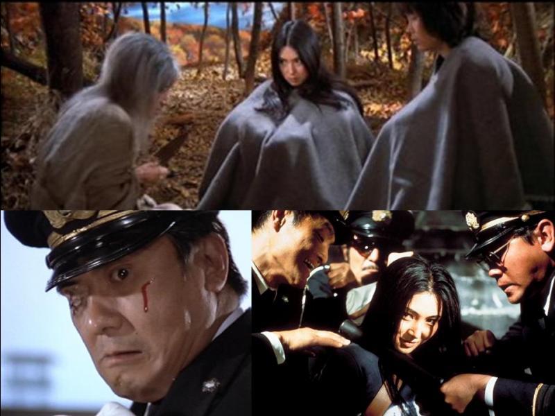 Ce film est un thriller japonais. Il a été réalisé par Shunya Ito.Meiko Kaji, Fumio Watanabe, Kayoko Shiraishi… font partie de distribution.Une jeune femme a été condamnée pour meurtre. Tous les jours elle subit les agressions de ses gardiens. Un jour, elle s'évade. Le directeur de la prison veut, à tout prix, la retrouver.Quel est ce film ?