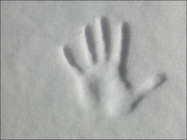 """A quel écrivain doit-on le roman policier """"La main"""" dont l'action se déroule sur fond de tempête de neige, plus connu pour avoir publié """"L'affaire Saint-Fiacre"""" ?"""