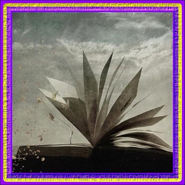 """A quel écrivain doit-on """"Vendredi ou la vie sauvage"""" (inspiré du livre Robinson Crusoé) ?"""