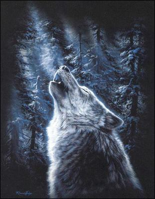 """Qui a écrit """"L'appel sauvage"""" plus connu sous le nom de """"L'appel de la forêt"""" ?"""