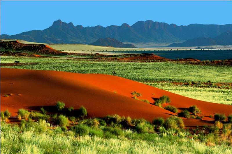 Dans ce pays d'Afrique australe, bordé par l'océan Atlantique, vous pourrez notamment effectuer un safari dans le parc national d'Etosha, traverser le plus vieux désert du monde ou encore admirer de formidables formations géologiques. Vous voici :