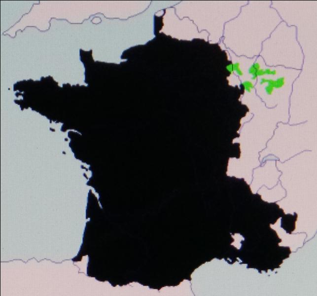 En 1552, la France conquiert les villes épiscopales de Metz, Toul et Verdun. On les appelle les