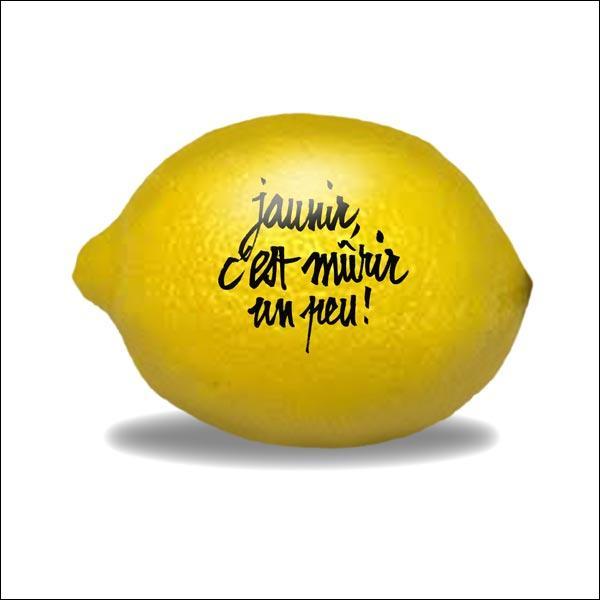 'La capitale du citron', ça vous fait penser à quelle ville ?
