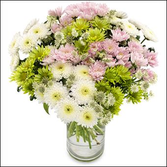 Dans un vase, ces fleurs peuvent aussi être gaies :