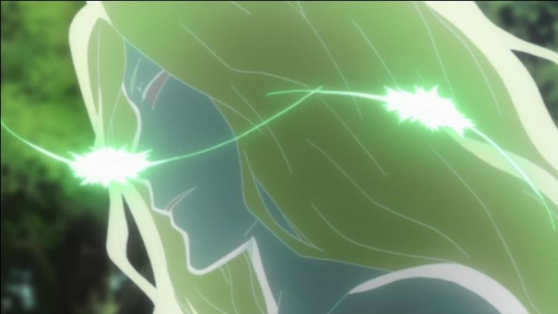 Je suis la Couronne Funéraire de la Foudre et suis un Byakuran venu d'un monde parallèle. Je suis :