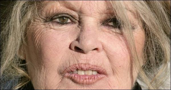 Que vous inspire cette image de Brigitte Bardot ?
