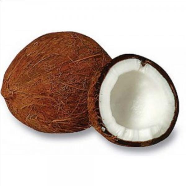 Je suis le fruit du cocotier. Qui suis-je ?